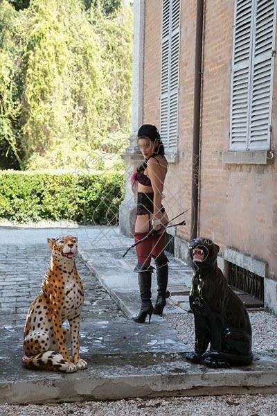 Foto 478 di Helene Castelli escort Perugia
